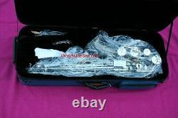 2004 B&S Medusa Series 2006 Bb Tenor Sax, #016,410, FACTORY NEW