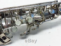 Cannonball Big Bell Stone Series Hotspur Alto Saxophone