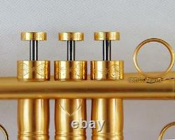 Customized Professional Gold plating Brushed Trumpet horn Monel Valve With Case