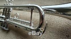 D. Calicchio DT-S1s/3M DAVE TRIGG Model, original case GAMONBRASS trumpet