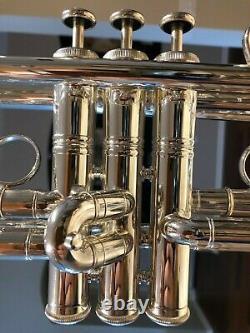 Flip Oakes Wild Thing American Bb Trumpet