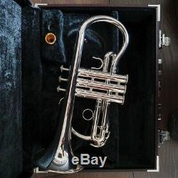 Professional Yamaha 6610s soprano cornet Denis Wick goldplated mouthpiece