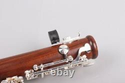 Advance Professional Rosewood Clarinet Bb Clé Clarinette Silver Plaqué Key Case
