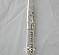 Clé G Professionnelle Flûte Alto Plaquée Argent Avec Headjoin Curved Droite Withcase