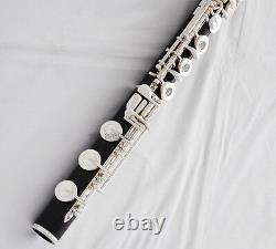Ebony Professionnelle Flûte En Bois B Pied 17 Trou Ouvert Joint De Tête D'europe Avec Boîtier