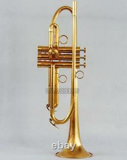 Placage Professionnel Personnalisé D'or Brushed Trumpet Horn Monel Valve With Case