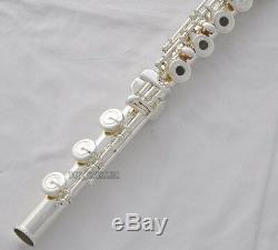 Professional 17 Trous Ouverts Flûte Traversière Argent G Clés Offset B Pied E De Split Avec Le Cas