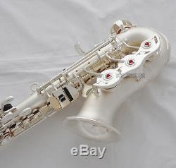 Professionnel Nouveau Taishan Curved Soprano Saxophone Satin Silver Sax Pads Italiens