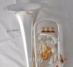 Système De Compensation Professionnel Euphonium Silver Gold Plaqué Avec Boîtier De Roue